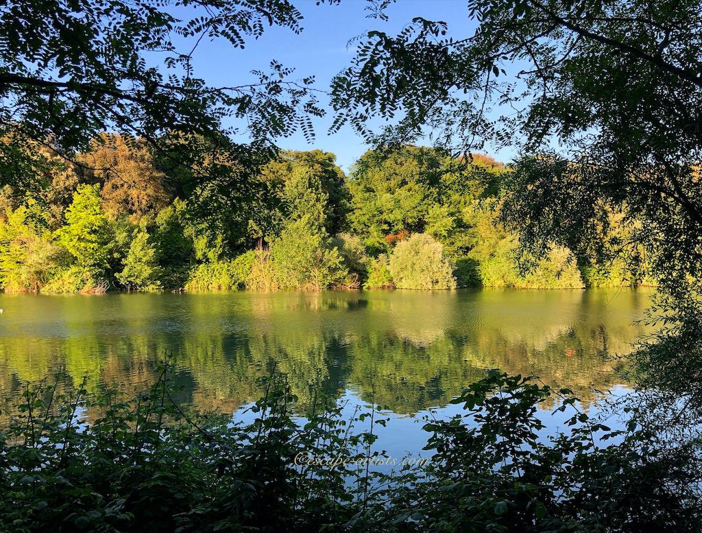 Lago del Belvedere in Villa Pamphili