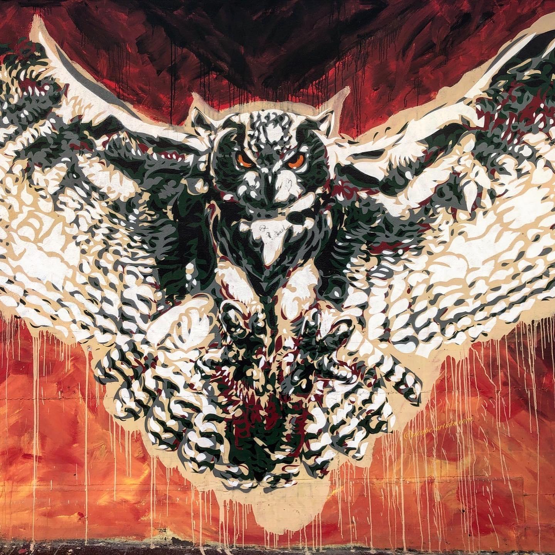street art torpignattara Owl by Diavù
